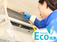 wall-eco-eye